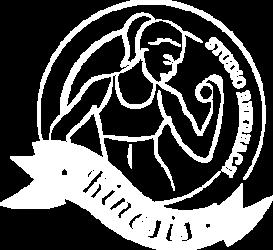 Kinesis Studio Logo Firmy